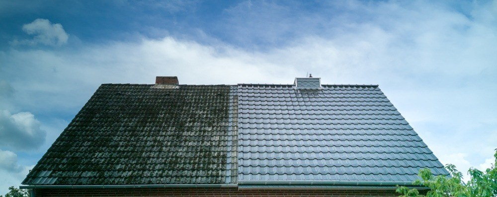 roof soft washing and cleaning in Chicago